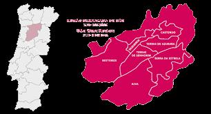 Mapa Região Demarcada dos Vinhos do Dão